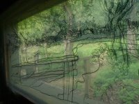 drawings on acetate from inside the bird hides and collaborative drawings
