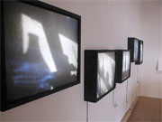 Installation shot of Still Lights light boxes
