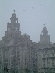 Looking back at the Liver buildings with snow