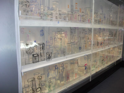transparent drawings on acetate made with participants at The Big Draw Hunterian Museum.